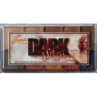 https://www.feroca.com/874-thickbox/skin-illustrator-dark-fleshtone-palette.jpg