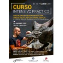 Intensive Course 1 week with Juan Villa (3 to 7-07-2017)